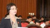 Cựu đại biểu Quốc hội Châu Thị Thu Nga hầu toà