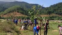 Con Cuông: Hơn 800 đoàn viên thanh niên ra quân 'Ngày Chủ nhật xanh'