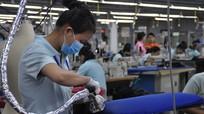 9 tháng, Nghệ An có 724 doanh nghiệp đóng mã số thuế