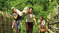 Báo động tảo hôn, hôn nhân cận huyết thống ở Tây Nghệ An