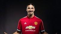 Ibrahimovic sẽ sắm vai dự bị trong cuộc trở về Man Utd
