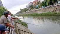 Người dân phố Vinh đổ xô câu cá sau mưa ở Kênh Bắc