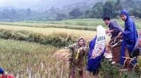 Kỳ Sơn: Bộ đội, thanh niên giúp người dân ứng phó mưa lũ