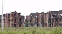 Nghệ An: Chấm dứt, thu hồi đất 3 dự án chậm tiến độ