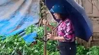 Nữ Bí thư phường đứng trên bè để cán bộ kéo đi thị sát lũ lụt
