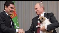 Hình ảnh Tổng thống Putin sung sướng đón nhận chú chó mừng sinh nhật