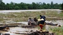 Người dân liều mình vớt củi lụt giữa nước lũ