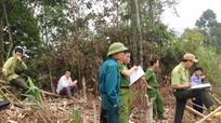 Thu hồi giấy CNQSD đất lâm nghiệp các hộ, cá nhân vi phạm luật bảo vệ rừng