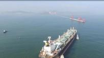 Tàu khủng cập cảng quốc tế Nghệ An