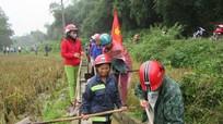 Gần 400 người dân đội mưa làm thủy lợi ở Con Cuông