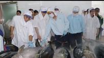Châu Âu 'rút thẻ vàng' với hải sản Việt Nam?