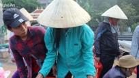 Nghệ An: Thương lái 'tranh mua' thần dược biển