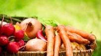 Những loại rau củ ăn ngon bổ hơn vào mùa thu
