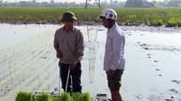 Nông dân Diễn Châu mua 120 máy cấy không động cơ