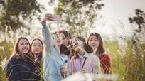 Cuối tuần nhiều người đổ xô tới cánh đồng cỏ lau tuyệt đẹp ở Nam Đàn