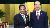 Chủ tịch nước Trần Đại Quang gặp Quốc vương Brunei ở Đà Đẵng