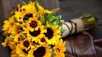 6 loài hoa thay lời tri ân dành tặng thầy cô