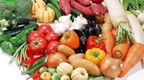 8 bí quyết thành công cho khởi nghiệp kinh doanh thực phẩm sạch