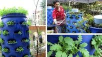 6 giải pháp trồng rau sạch cho nhà chật