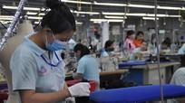 Nghệ An: Kim ngạch xuất khẩu tăng hơn 20%