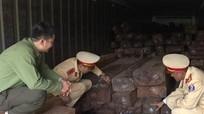 Bắt giữ chiếc xe tải chở gần 20m3 gỗ lậu