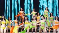 Chung kết Hoa hậu Hoàn vũ Việt Nam dời sang năm 2018