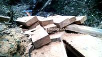 Phát hiện hơn 20 phiến gỗ 'vô chủ' ở Kỳ Sơn