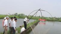 Bãi bỏ 12 thủ tục sản xuất kinh doanh chăn nuôi, thủy sản