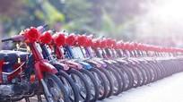 Độc đáo màn rước dâu bằng 100 xe máy Dream thắt nơ đỏ