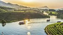 90% khách sạn và đơn vị lữ hành Nghệ An có website