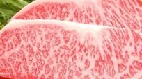 Thịt bò ngoại giá vài triệu đồng một kg ồ ạt vào Việt Nam