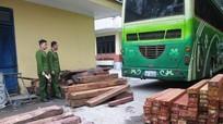 Bắt xe khách biển số Lào chở trên 10 m3 gỗ quý hiếm