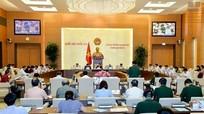 Ủy ban thường vụ Quốc hội xem xét, phê chuẩn nhân sự
