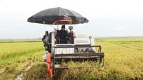 Nông dân Quỳnh Lưu sắm hơn 600 máy nông nghiệp