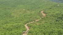 Bất cập và sai phạm trong giao đất, giao rừng ở Nghệ An