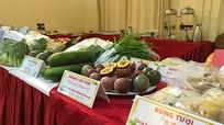 Giới thiệu sản phẩm và công ty nông nghiệp tỉnh Nghệ An với doanh nghiệp Nhật Bản
