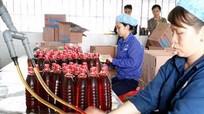 Công ty CP thủy sản Vạn Phần Diễn Châu: 70 năm phát triển vững mạnh