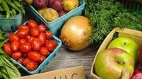 Loạn thực phẩm hữu cơ 'tự xưng' - Ai quản lý?