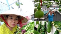 Ngạc nhiên với những loại rau quả trồng trên sân thượng chỉ rộng 18m2.