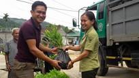 Quế Phong trồng trên 358 ha rừng nguyên liệu gỗ lớn