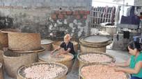 Hơn 160.000 hộ ở Nghệ An thoát nghèo từ vốn vay Ngân hàng chính sách