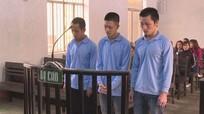 Phạt 41 năm tù giam đối với 3 đối tượng trộm cắp gần 2 tỷ đồng