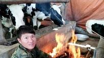 Nông dân Nghệ An đốt lửa sưởi ấm đàn bò sữa