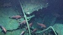 Phát hiện xác tàu ngầm 800 tấn mất tích hơn một thế kỷ