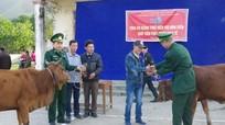 BĐBP tặng bò giống cho giáo dân nghèo xã biên giới
