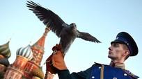Chuyện ít biết về đội 'cảnh vệ bay' bảo vệ Điện Kremlin