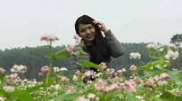 Vườn hoa tam giác mạch ở Nghệ An khoe sắc
