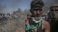 Liên Hợp quốc lên án Israel sử dụng vũ lực với người dân Palestine