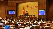 Quốc hội quy định về doanh nghiệp kinh doanh đặt cược thể thao