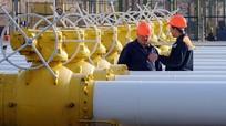 Nga- EU- Ukraine đàm phán về thỏa thuận khí đốt; Bộ trưởng Thể thao Indonesia từ chức vì tham nhũng
